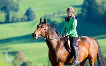 Reiten Hotel zur Post Reiterin am Pferd